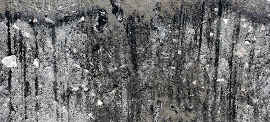 stone texture 46