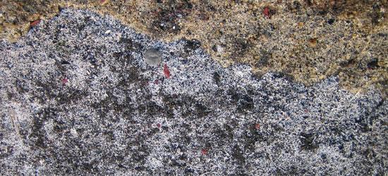 stone texture 54