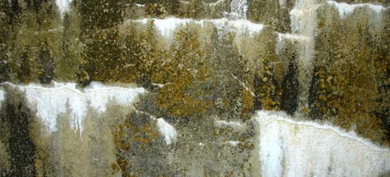 stone texture 56